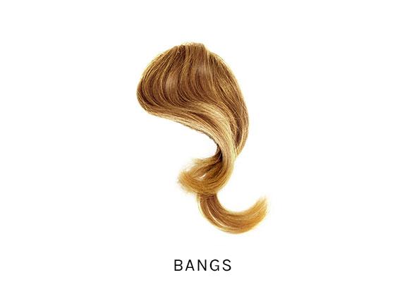 Bangs-Internal-2